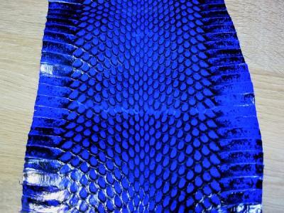 Кобра шкура натуральная синяя