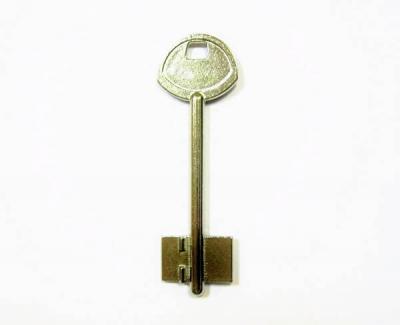 Заготовка для ключа Гардиан-1 Gard1G флажковая
