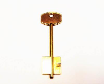 Заготовка для ключа Меттэм-2 (06) флажковая